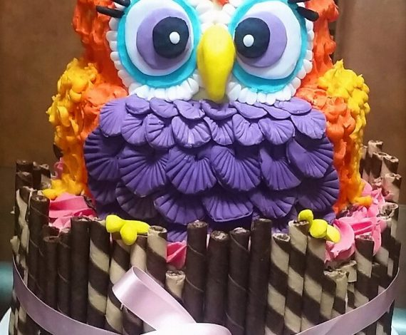 The Mighty Owl Cake